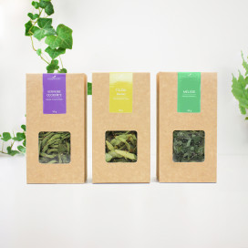 Assortiment infusions nuit calme